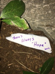 Hope Rock 2017
